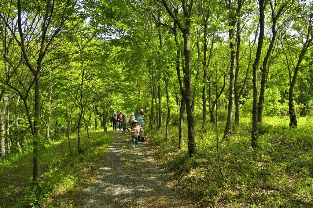 由良野の森について – 由良野の森(愛媛・久万高原) 豊かな里山環境で ...